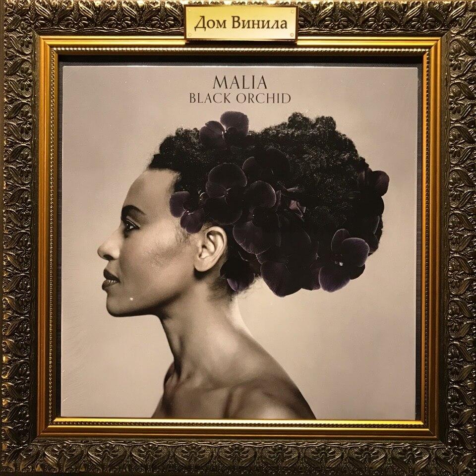 Купить виниловую пластинку Malia - 2012 - Black Orchid
